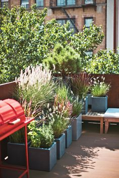 about charming urban gardens on Potted plants transform this rooftop terrace in Brooklyn into a small but inviting green retreat.Potted plants transform this rooftop terrace in Brooklyn into a small but inviting green retreat. Large Backyard Landscaping, Landscaping Tips, Container Plants, Container Gardening, Container Houses, Small Outdoor Spaces, Terrace Garden, Rooftop Terrace, Outdoor Gardens
