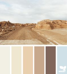 How to Coordinate a Color Palette with Your Stone Fireplace - Made in the Shade Color Harmony, Color Balance, Design Seeds, Colour Pallette, Colour Schemes, Color Combinations, Palette Deco, Desert Colors, Colour Board