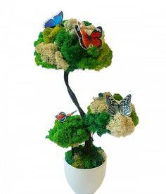 """Decoratiune din licheni """"Bonsai"""""""