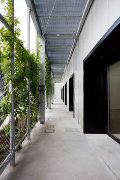 mesh wall