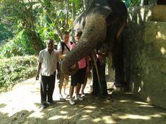 Sri lanka william tours Negombo. http://www.williamtoursandtravelsrilanka.com
