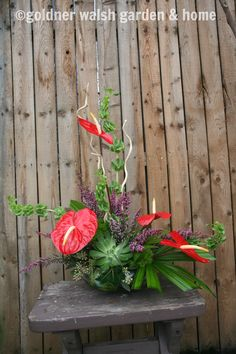 Valentine's Day arrangement by Goldner Walsh floral designer. Features anthurium, heather, bells of Ireland, seeded eucalyptus, and succulent.