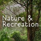 Sunshine Coast Hinterland Walks and Trails Picnic Spot, Sunshine Coast, Brisbane, Walks, Trail, Nature, Plants, Naturaleza, Plant