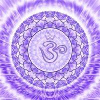 Portal de Luz: Chakras: Explicação dos 7 principais Chakras