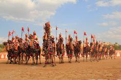 Camels Fest Bikaner