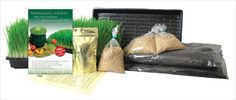 Got my kit, going to start each day with a wheat grass shot, the health benefits are amazing!