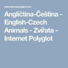 Angličtina-Čeština         - English-Czech Animals - Zvířata - Internet Polyglot Internet, English, Pictures, Photos, English Language, Grimm