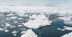Três causas do aquecimento global. O aquecimento global é causado devido ao efeito estufa. No entanto, a taxa atual é preocupante. O aquecimento tem efeitos devastadores, causando secas, tempestades intensas e escassez de alimentos. O derretimento dos icebergs e o aumento dos níveis do mar também podem causar a extinção de animais como o urso polar. Os seres humanos estão ...