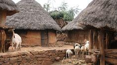 Viviendas típicas de la Comunidad Konso (Etiopía, África)