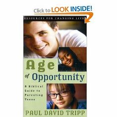Age of Opportunity: A Biblical Guide to Parenting Teens, Second Edition (Resources for Changing Lives)    If you only read one book about teenagers this is it. This is very worth owning and reading multiple times.
