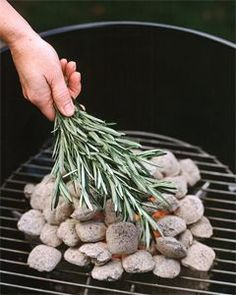 rosemary or sage bundles thrown into a campfire will keep flying, biting pests away