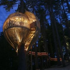 This treehouse restaurant  resides on the north of Auckland, New Zealand, nestled into a 40 meter high redwood tree.