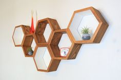 Honeycomb Shelves - Medium Set of 6 from Nature's Toy Store