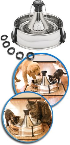 drinkwell pet fountain...pets don't have to wait for their turn for water and constant circulation of the water inhibits bacteria growth