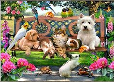 Pets - Stretched Canvas