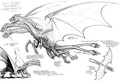 "Ghidorah - ""Early preliminary designs for kaiju that where to appear in Dark Horse's Godzilla comic in 1987 by Stephen Bissette."""
