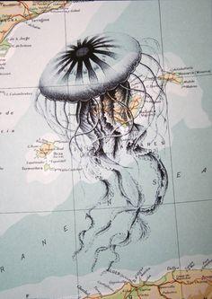 Jellyfish Print on Vintage Map Caribbean Sea