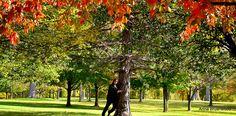 Beauty of Autumn....
