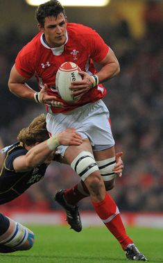 Wales' Aaron Shingler tries to make some inroads Rugby 7's, Rugby Sport, 2015 Rugby World Cup, World Rugby, Six Nations Rugby, Hot Rugby Players, International Rugby, Wales Rugby, Soccer Guys