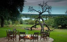 Boma dinner with a view at the Imbabala Safari Lodge, overlooking the Zambezi. Our Zambezi Treasures includes accommodation at this luxury lodge as well as activities and more. Elephant Camp, Victoria Falls, Lodges, Trip Advisor, Safari, Cruise, Photos, Africa, Journey