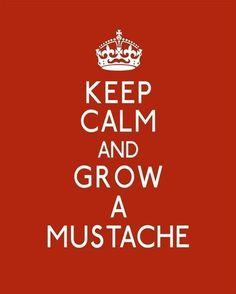 Keep calm and grow a moustache. TRES MAUVAIS CONSEIL MESSIEURS ! c'est horrible et ça pique !