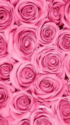 Обои iPhone wallpaper rose