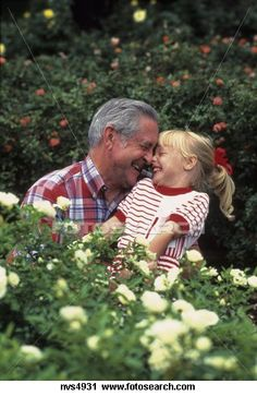 Stock Photography of Grandfather and granddaughter smiling and enjoying each other's company while outdoors surrounded by flowers NVS4931 - Search Stock Photos, Pictures, Prints, Images, and Photo Clip Art - NVS4931.jpg