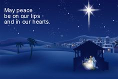 Catholic Christmas greetings to you! Merry Christmas Greetings, New Year Greetings, Merry Christmas And Happy New Year, Happy Holidays, Christmas Sayings And Phrases, Christmas Quotes, Christmas Pictures, Christmas Eve Mass, Christmas Fun