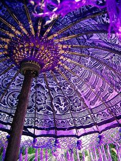Purple patio umbrella, a bit like sitting under a giant purple aster.