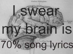 More like 90% of my brain is song lyrics.