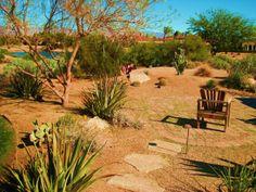 arid landscaping