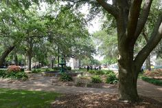 Lafayette Square in Savannah, GA  The squares are one of the coolest urban planning things this country has to offer