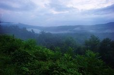 Fog is rolling through after the rain in the Great Smoky Mountains