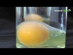 Zdejmowanie chorób jajem - YouTube Primum Non Nocere, Portal, Magick