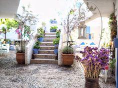 Outdoor Decor, Plants, Home Decor, Decoration Home, Room Decor, Plant, Interior Design, Home Interiors, Planting