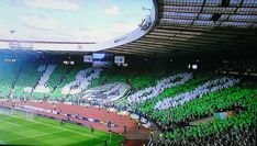 Scottish Cup Chaos – Bad News for Celtic Fans Ahead of Historic Final
