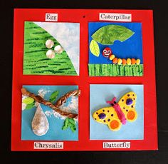 48 Best Cycle Of Life Projects Images Butterfly Crafts Butterfly