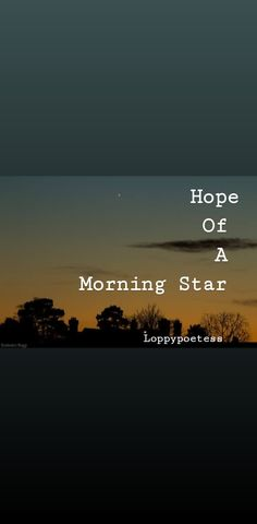 My Poetry, Poetry Books, Morning Star, Wattpad, Stars, Check, Sterne, Star