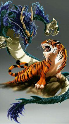 Tigre y dragón – unknown animals Dragon Tiger Tattoo, Tiger Dragon, Mythical Creatures Art, Fantasy Creatures, Japanese Tattoo Art, Japanese Art, Le Joker Batman, Samurai Artwork, Dragon Artwork