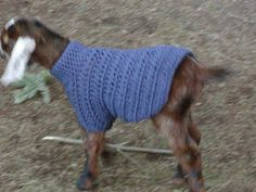 Crocheted Goat Sweater