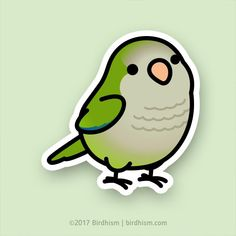 Chubby Green Quaker Parrot Stickers