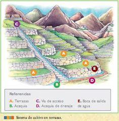 La agricultura de las culturas pre incas ~ Aprenda historia de la humanidad
