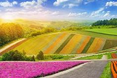 the best nature view - Google Search Niseko Japan, Beautiful Places In Japan, Sea Of Japan, Spring Resort, Nature View, Beautiful Flowers Garden, Natural Scenery, Pilgrimage, World Heritage Sites