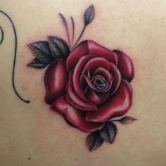 10 Best Tatuajes De Rosas Rojas Images Red Rose Tattoos Small