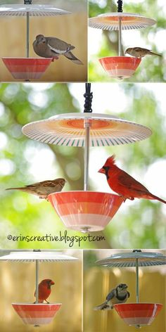 Make a Bird Feeder from Bowl and Plate - Springtime is in full swing and summertime is knocking on our door. Lots of birds chirping, why not have a closer look at them? I'm not a huge fan of all the very plain looking bird feeders out t diy garden cheap Make A Bird Feeder, Homemade Bird Feeders, Teacup Bird Feeders, Bird Feeder Poles, Bird House Feeder, Hanging Bird Feeders, Garden Crafts, Garden Projects, Diy Crafts