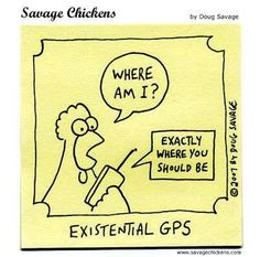 23 Best GPS humour images in 2013 | Funny, Funny christmas
