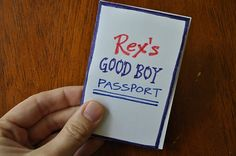 Good Boy Passport -- add things child needs to work on.  When they get all the boxes checked get to do fun activity with mom/dad.