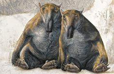 lostbeasts  Palorchestes.Herbivorous marsupial from Miocene-Pleistocene Australia.