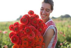 Growing Greens, Growing Flowers, Cut Flowers, Planting Flowers, Purple Flowers, Spring Flowers, Champs, Cut Flower Garden, Flower Gardening