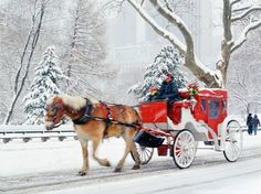 Hansom cab ride around Central Park in snowy New York City